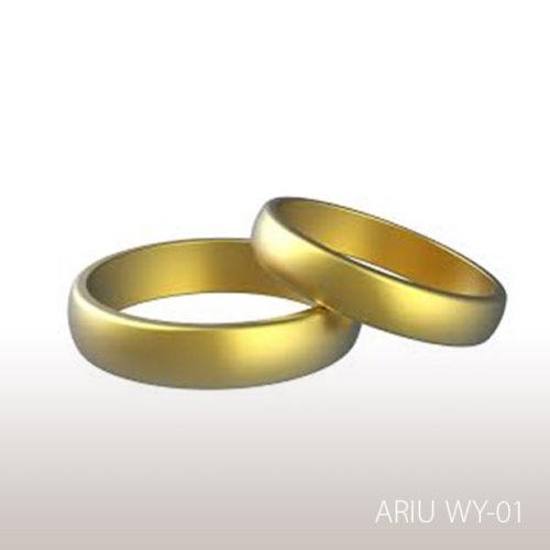 ariu-WY-01