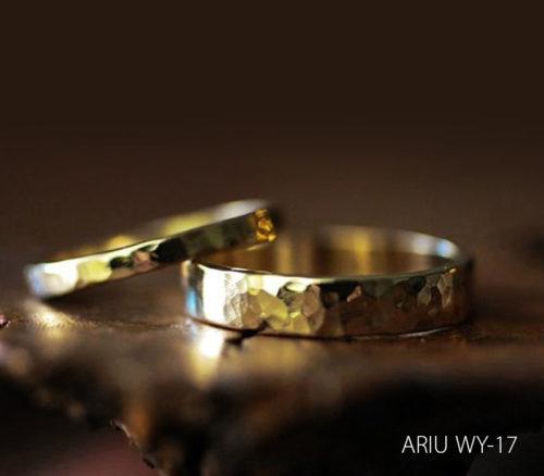 ariu-WY-17